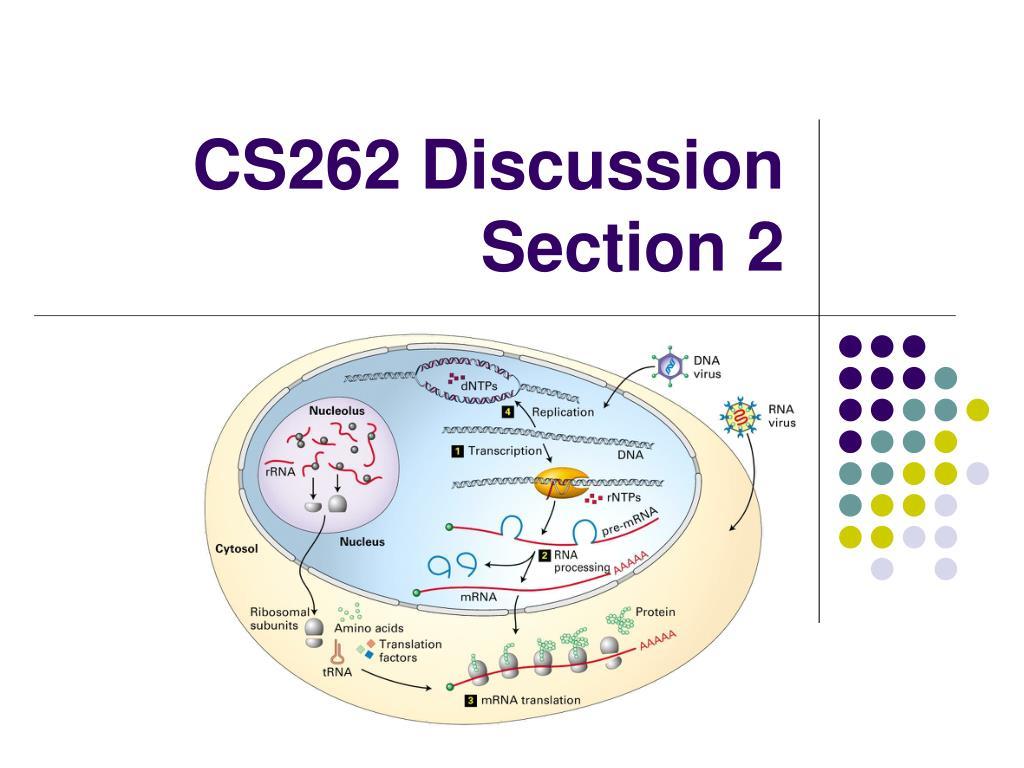 cs262 discussion section 2 l.