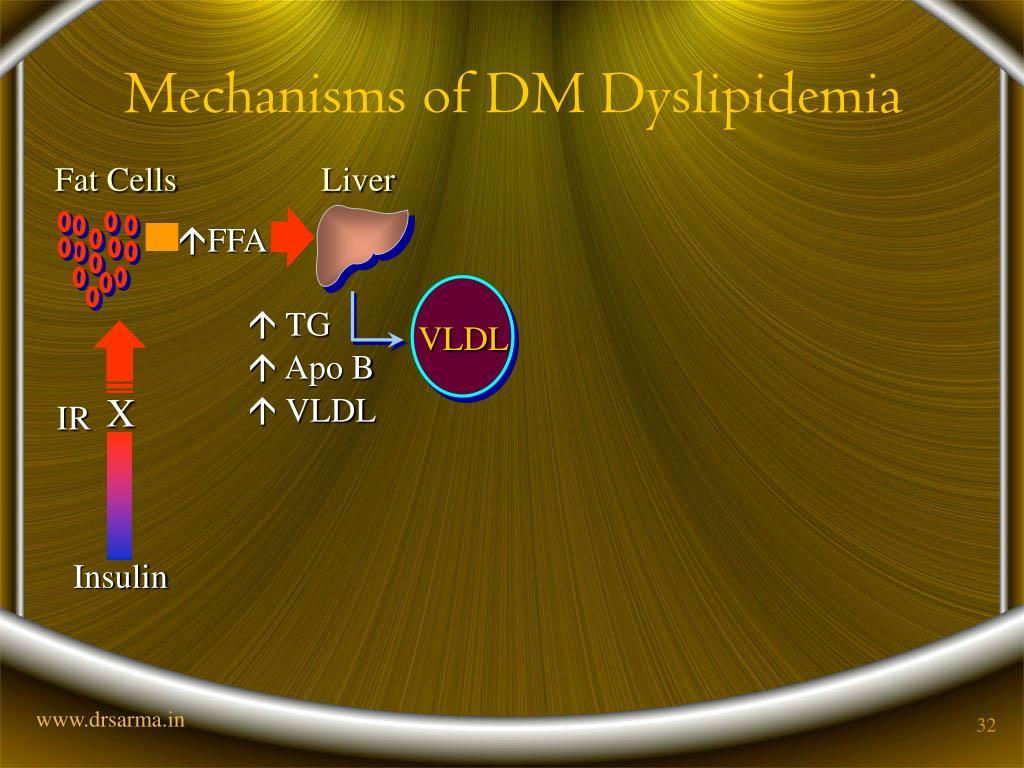 Mechanisms of DM Dyslipidemia