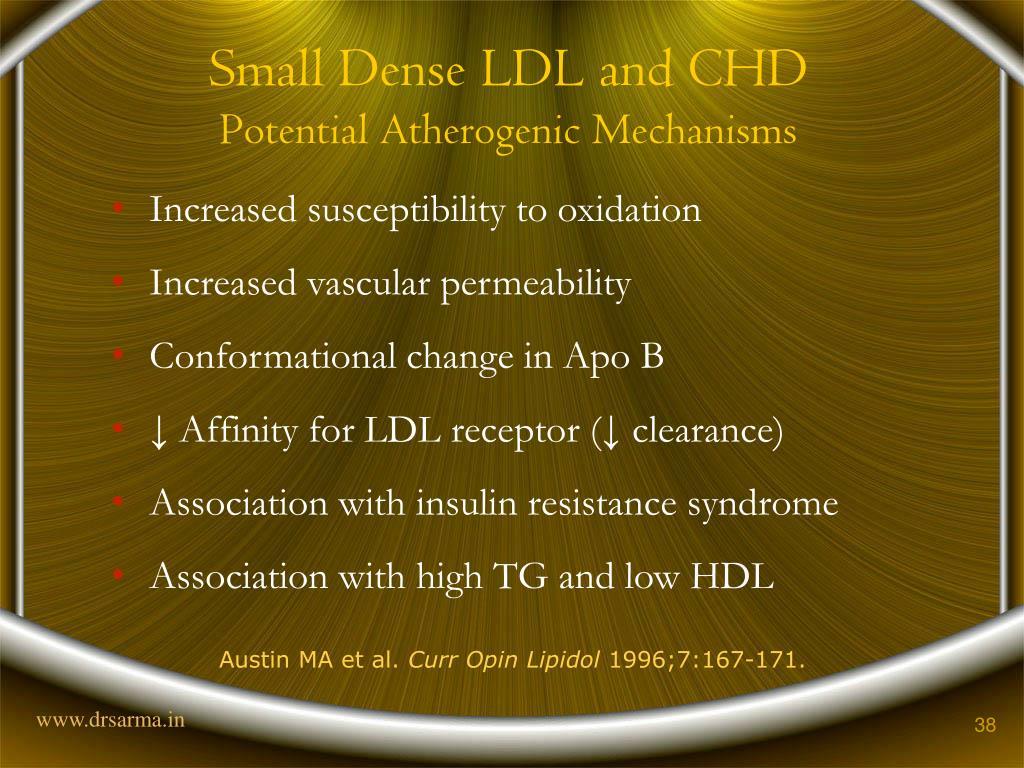 Small Dense LDL and CHD