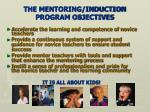 the mentoring induction program objectives