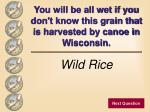 you will be all wet if you don t know this grain that is harvested by canoe in wisconsin32