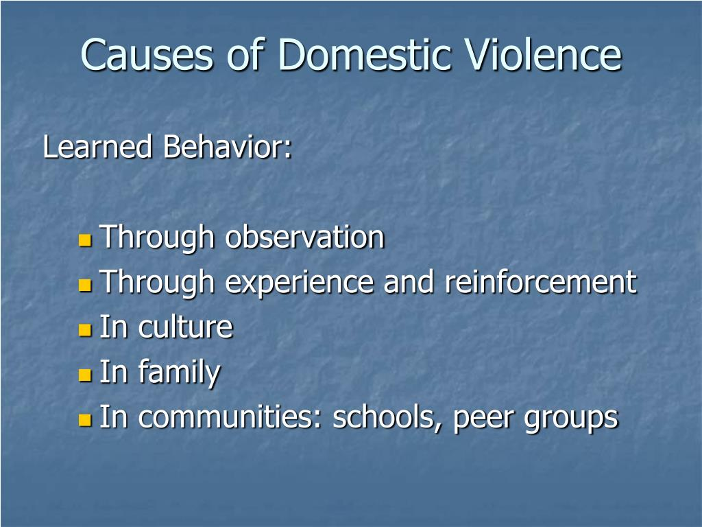 Causes of Domestic Violence