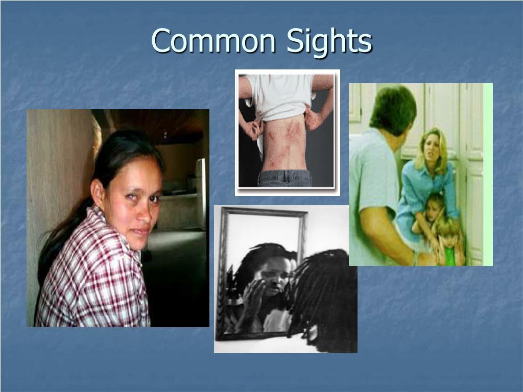 Common Sights