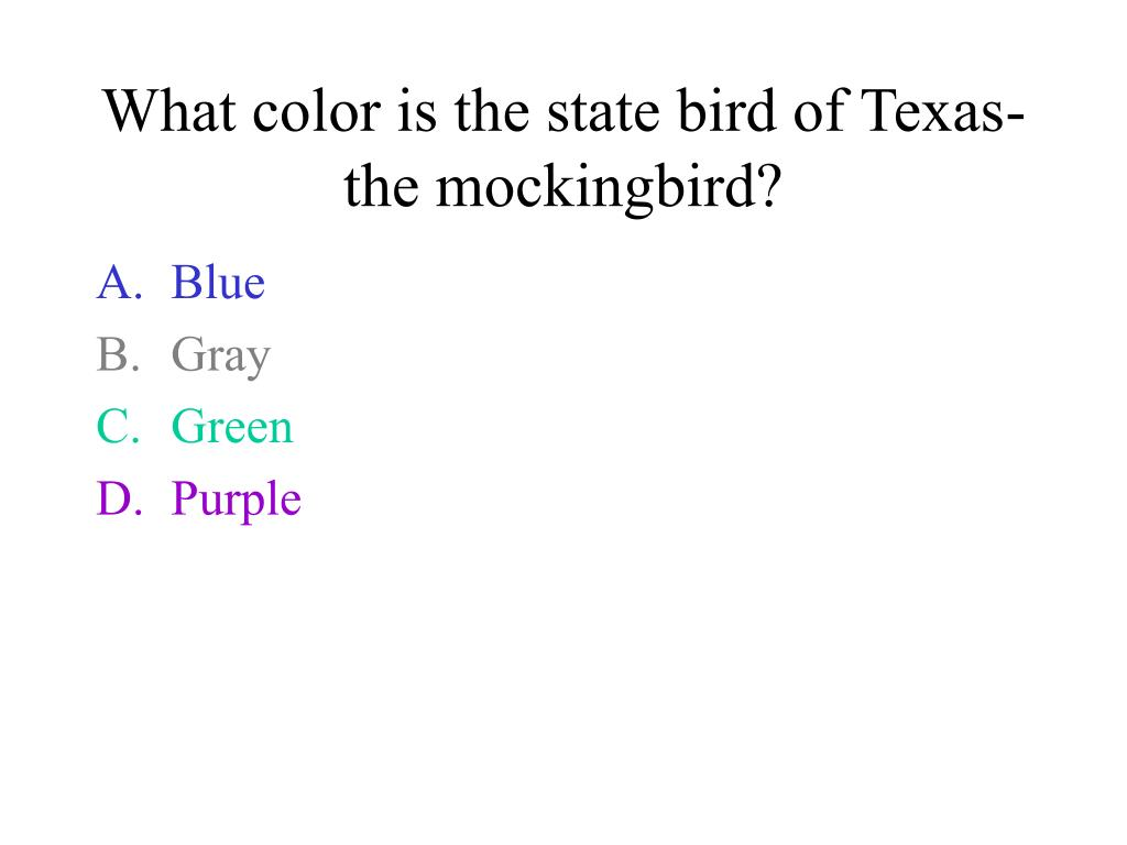 What color is the state bird of Texas- the mockingbird?