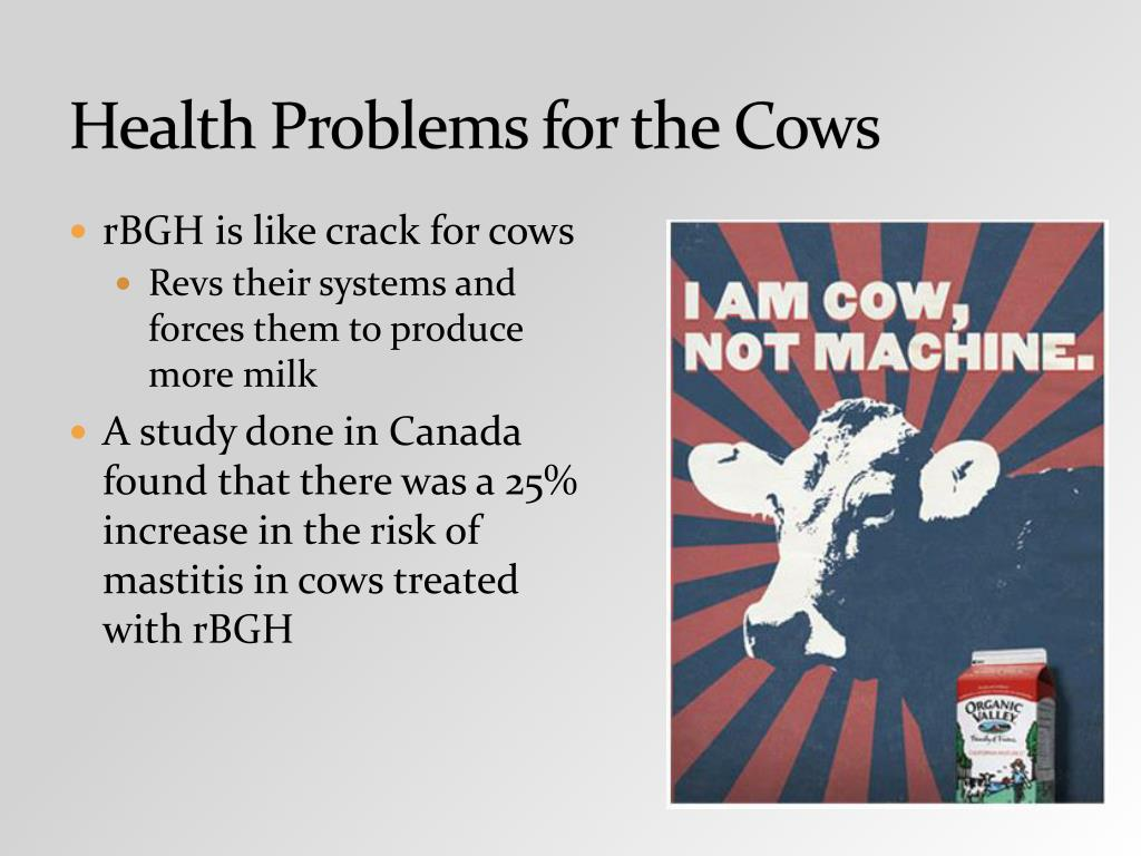 Health Problems for the Cows