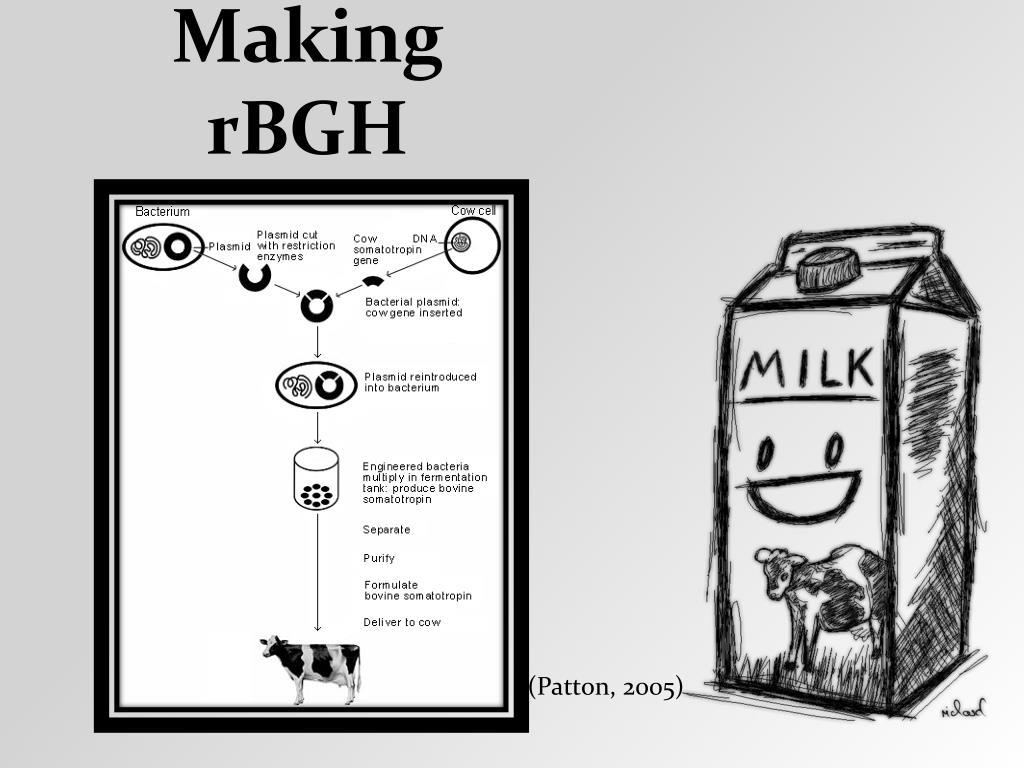 Making rBGH