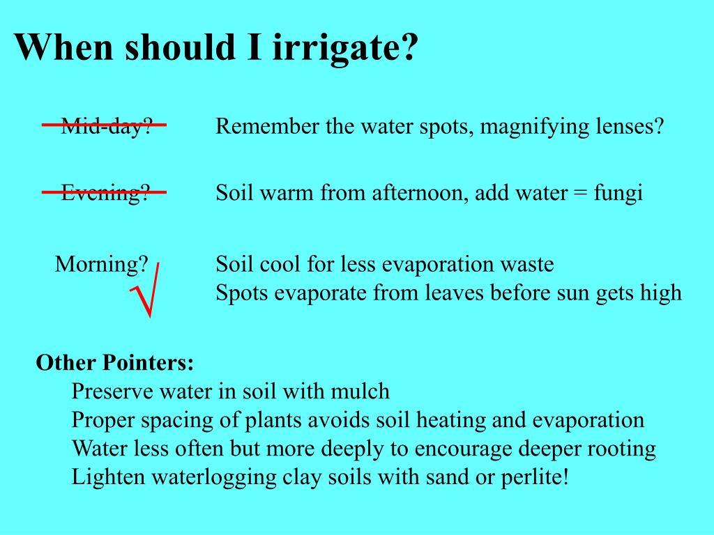 When should I irrigate?