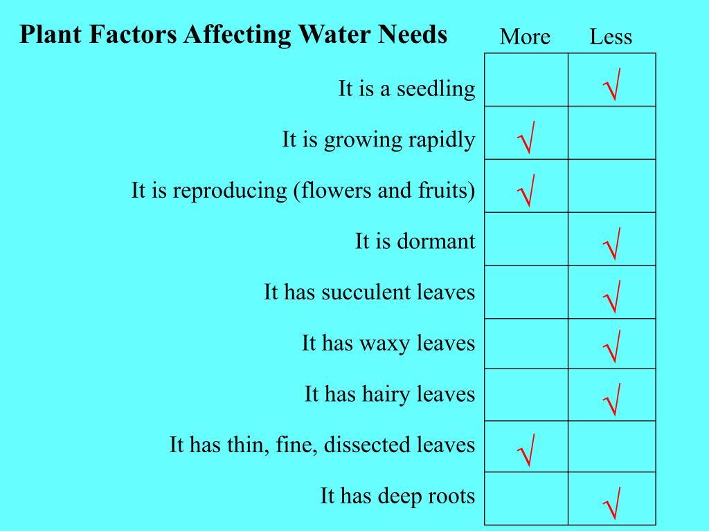 Plant Factors Affecting Water Needs