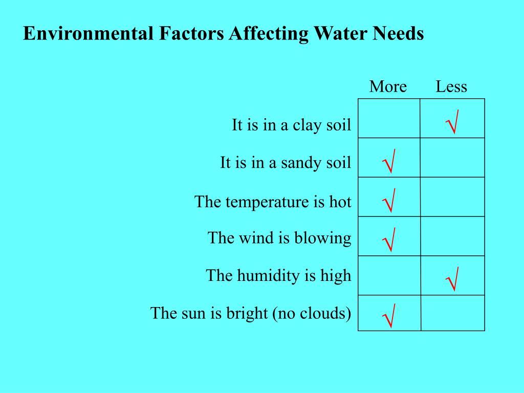 Environmental Factors Affecting Water Needs
