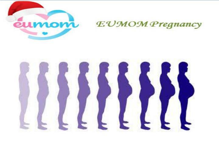 Pregnancy 275091