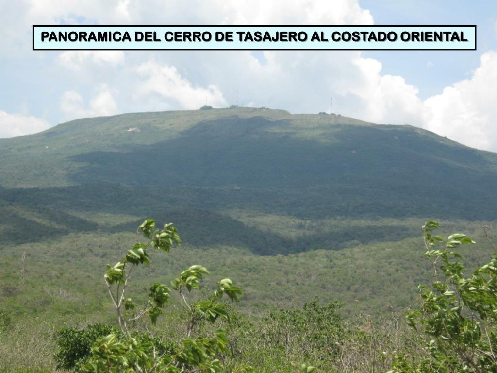PANORAMICA DEL CERRO DE TASAJERO AL COSTADO ORIENTAL