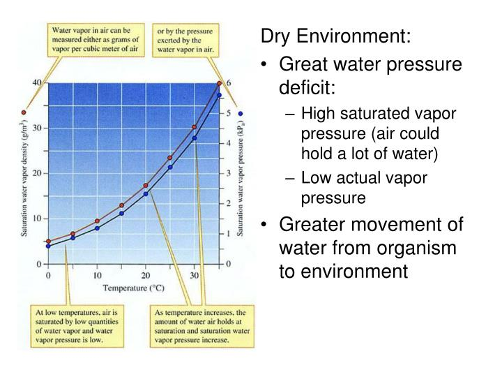 Dry Environment: