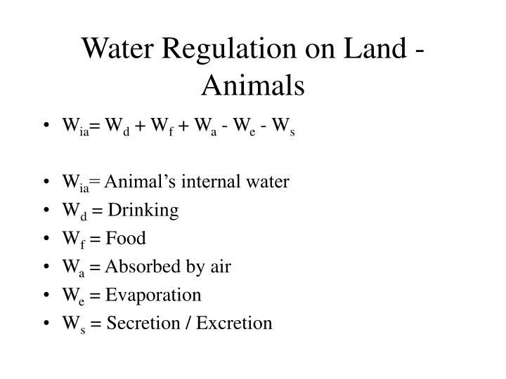 Water Regulation on Land - Animals