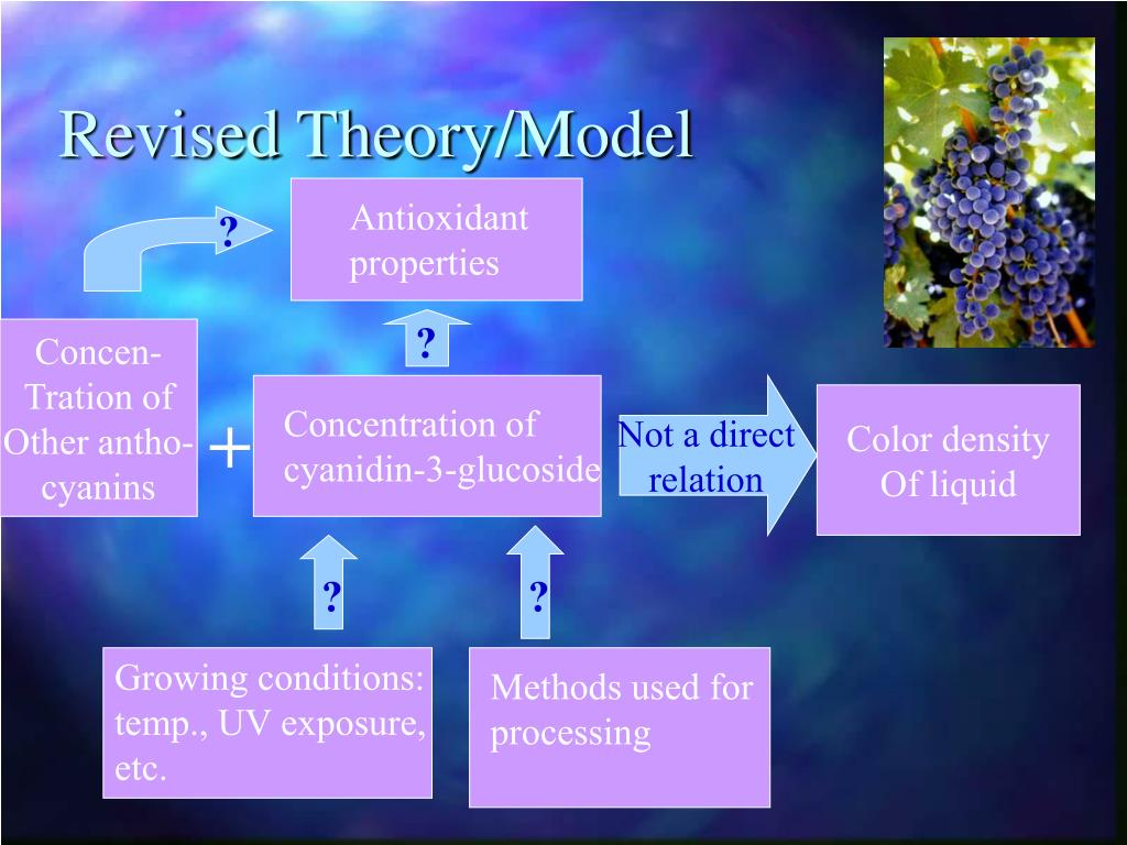 Revised Theory/Model