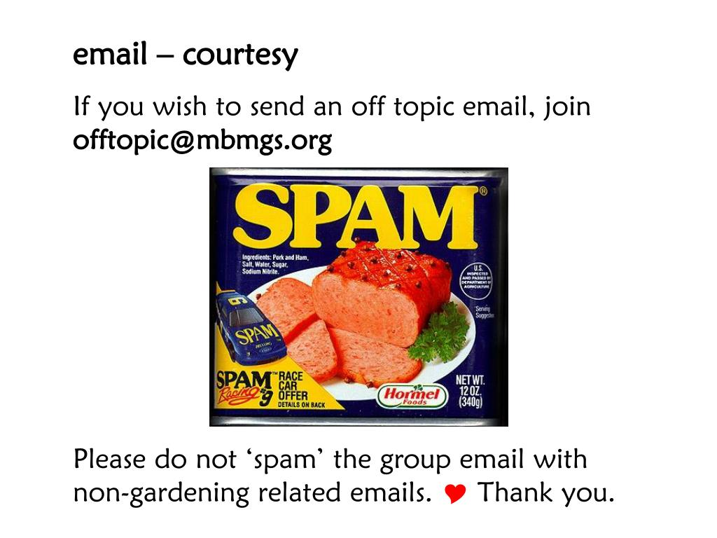 email – courtesy