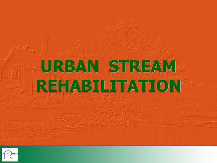 urban stream rehabilitation n.