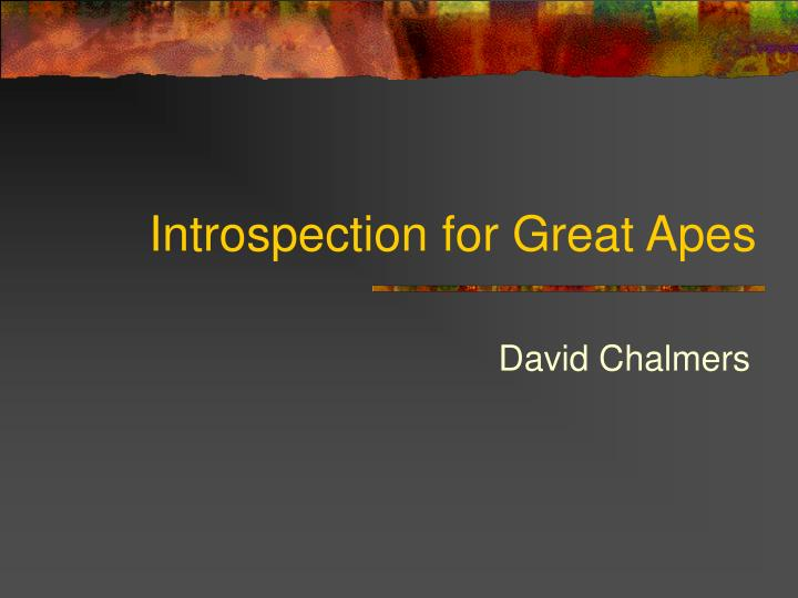 Introspection for great apes
