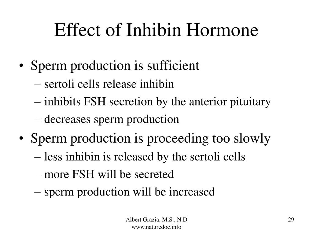 Effect of Inhibin Hormone
