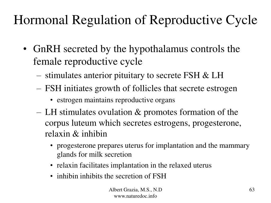 Hormonal Regulation of Reproductive Cycle