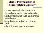 market determination of exchange rates summary