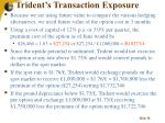 trident s transaction exposure38