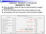 larceny property stolen by property type