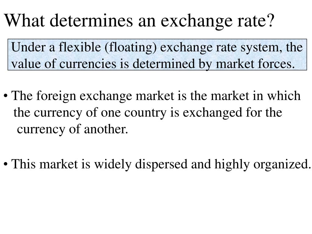 What determines an exchange rate?