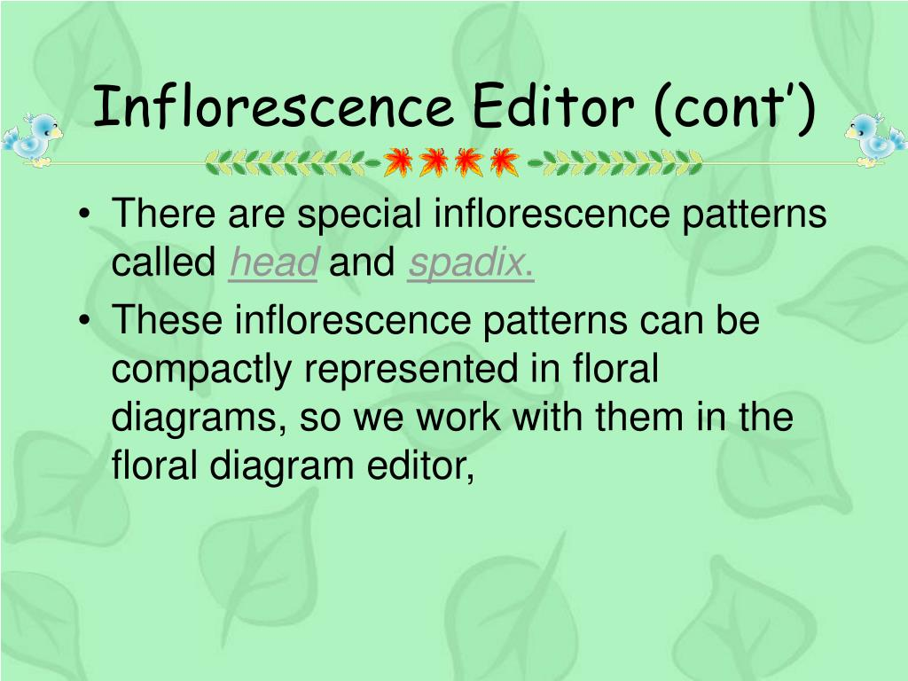 Inflorescence Editor (cont')