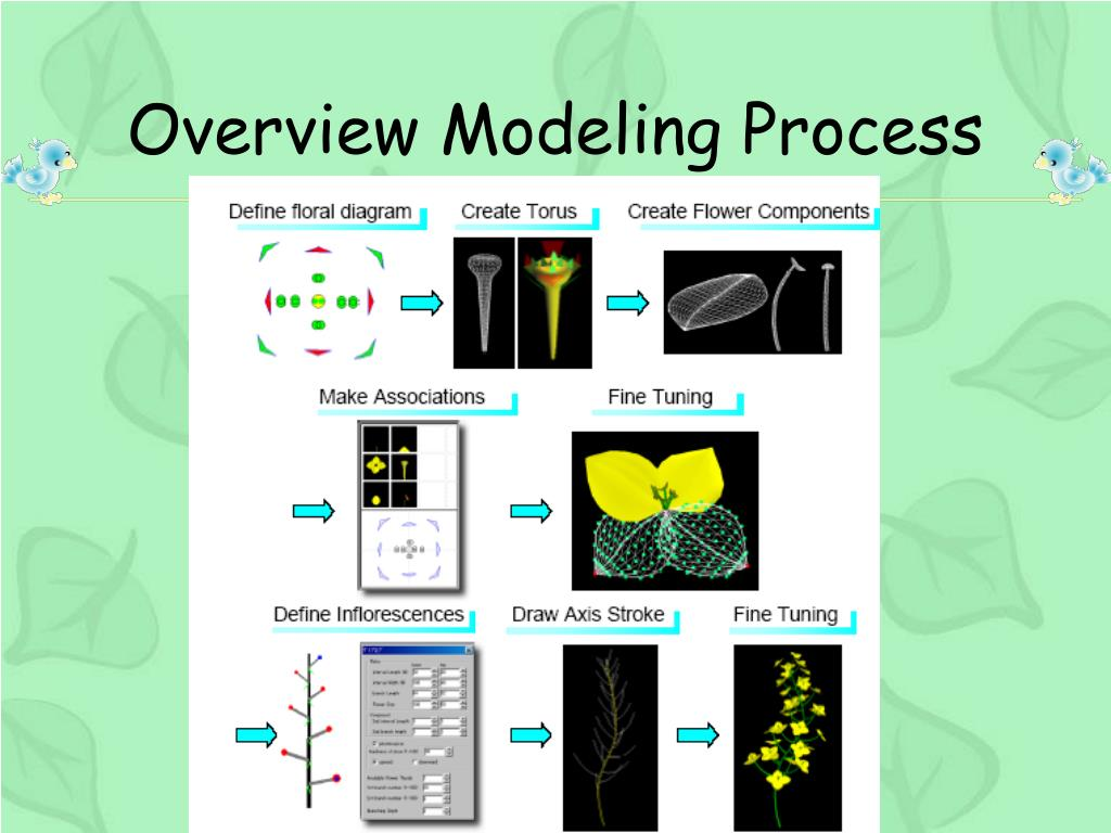 Overview Modeling Process