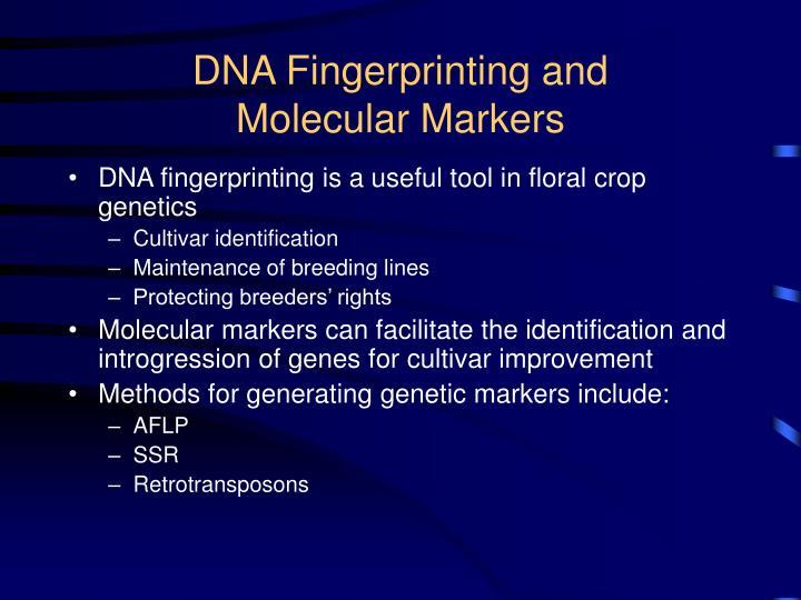 Dna fingerprinting and molecular markers
