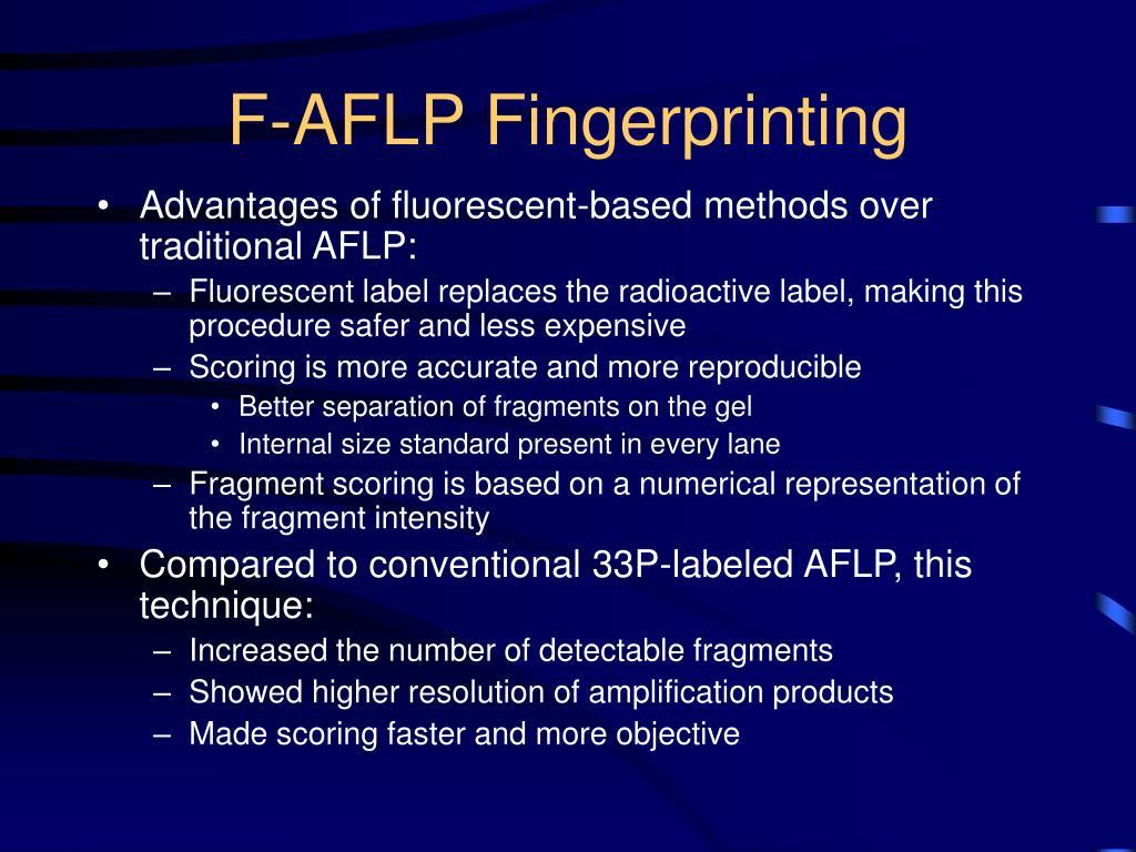 F-AFLP Fingerprinting