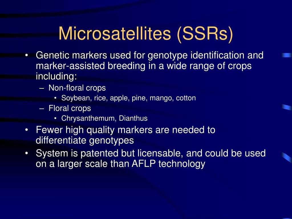 Microsatellites (SSRs)