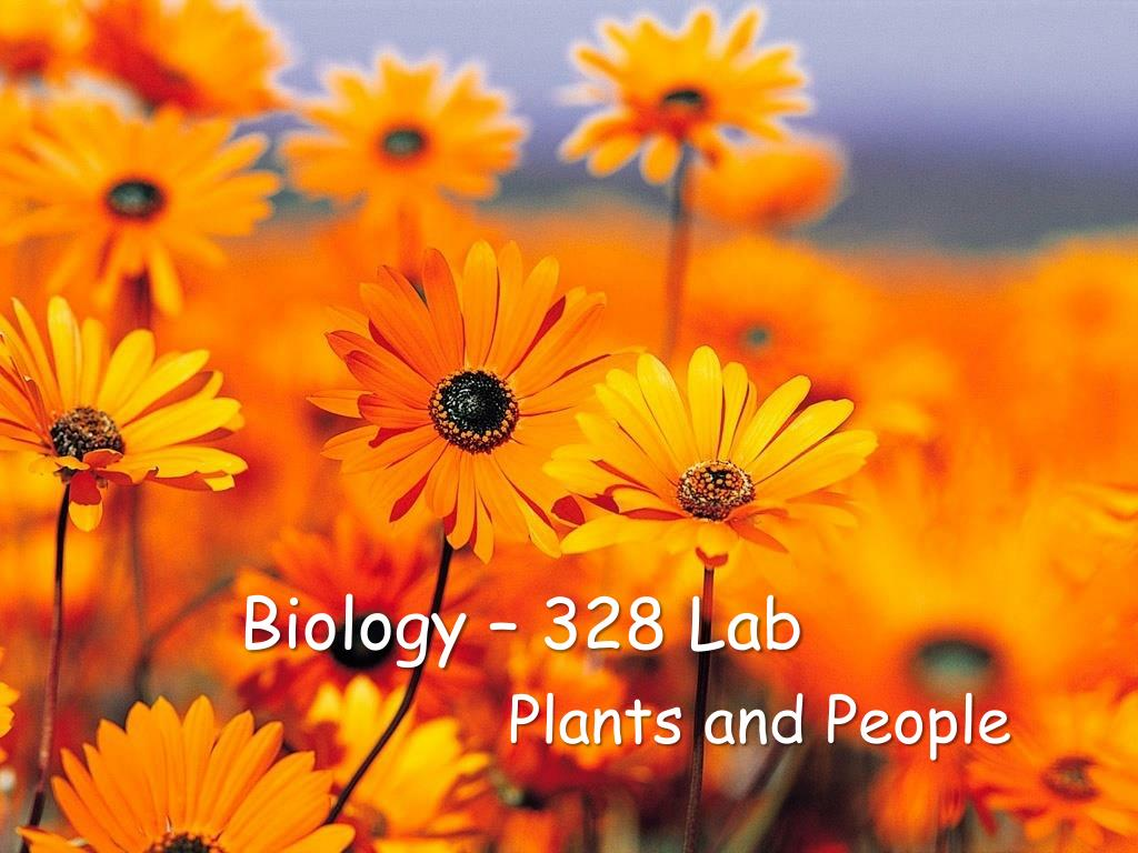 biology 328 lab l.