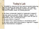 today s lab21