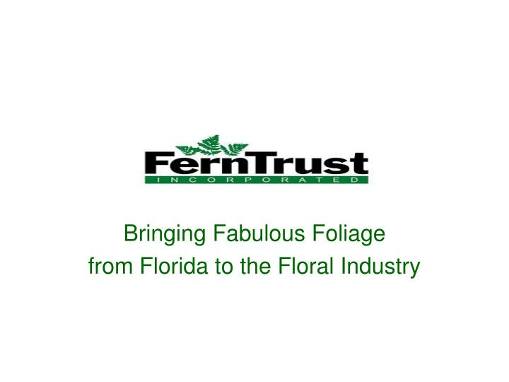 Bringing fabulous foliage from florida to the floral industry