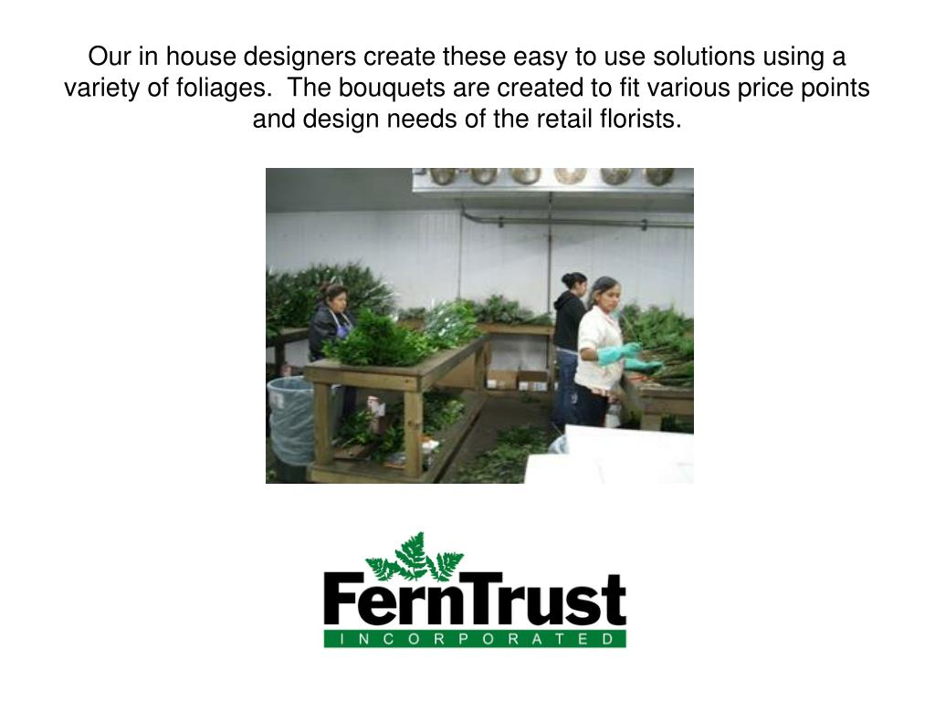 Our in house designers create these easy to use solutions using a variety of foliages.  The bouquets are created to fit various price points and design needs of the retail florists.