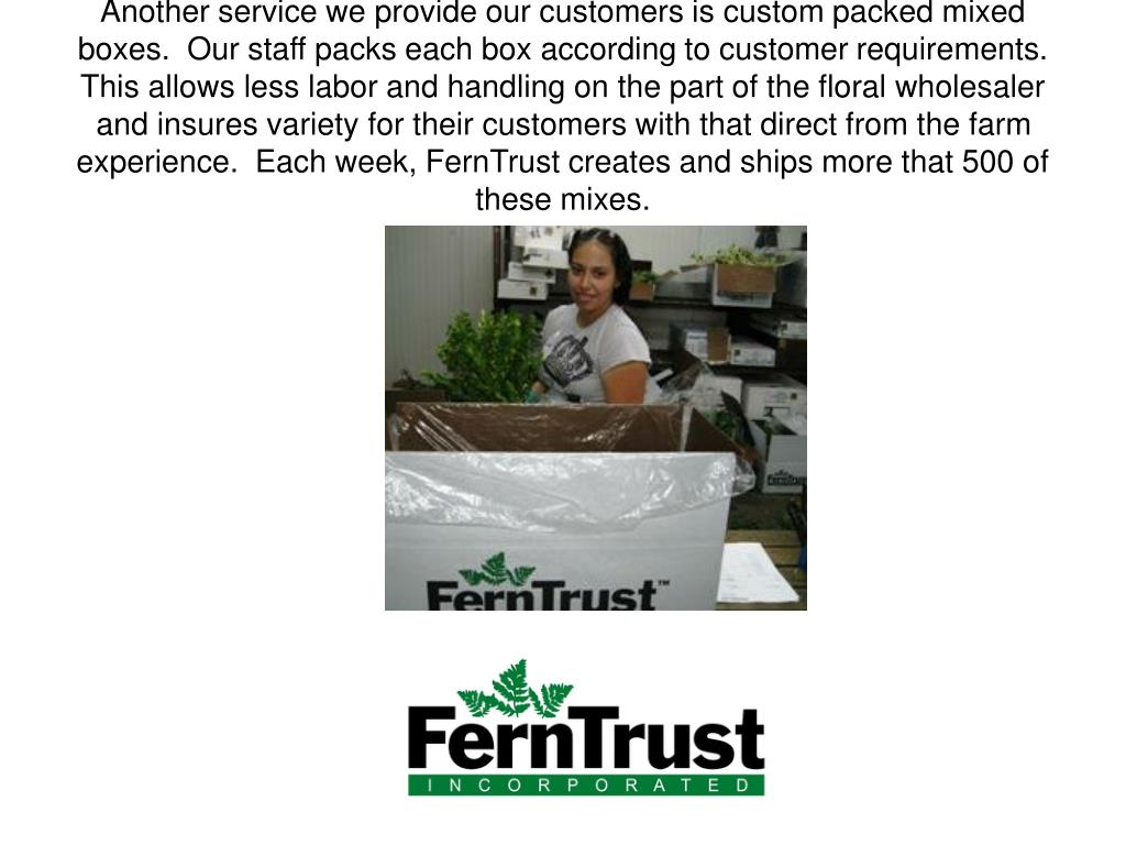 Another service we provide our customers is custom packed mixed boxes.  Our staff packs each box according to customer requirements.  This allows less labor and handling on the part of the floral wholesaler and insures variety for their customers with that direct from the farm experience.  Each week, FernTrust creates and ships more that 500 of these mixes.