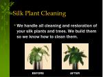 silk plant cleaning