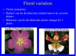 floral variation35