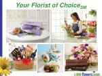 your florist of choice sm