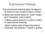 autonomous pathway