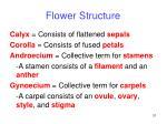 flower structure31