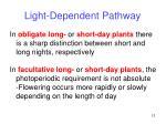 light dependent pathway12