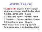 model for flowering25