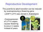 reproductive development8