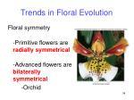 trends in floral evolution34