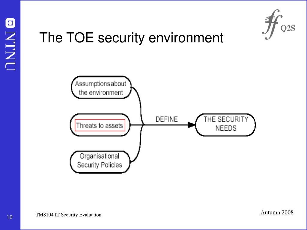 The TOE security environment