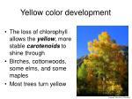 yellow color development