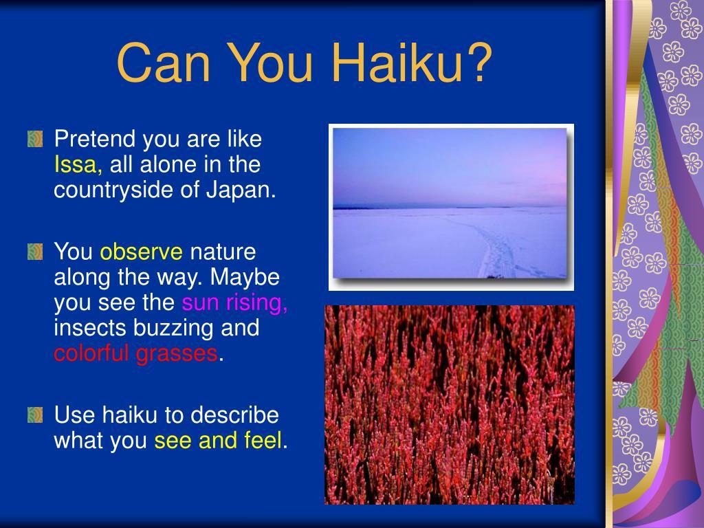 Can You Haiku?
