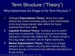 term structure theory
